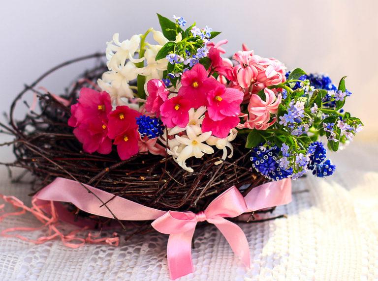 цветыIMG_9136-2
